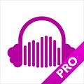 CloudPlayer Pro - クラウドストレージにあるオーディオファイルを再生できる音楽プレイヤー